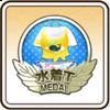 水着Tメダル