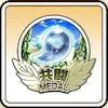 共闘メダル15