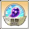 共闘メダル19