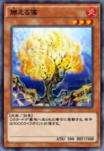燃える藻のカード画像