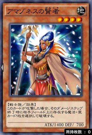 アマゾネスの賢者のカード画像