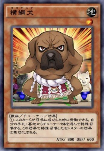 横綱犬のカード画像