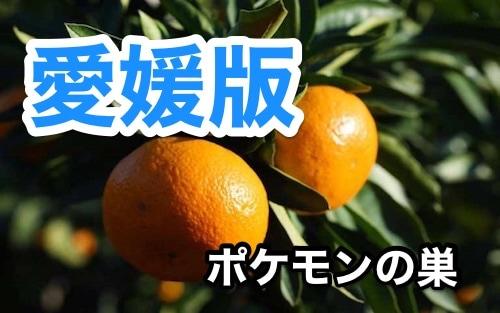 s_yun_6556