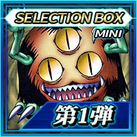 icon_selctionbox_mini_01