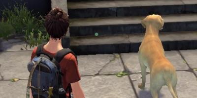 ライフアフター、犬、ペット 7