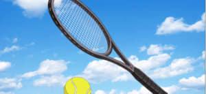 日吉若装備(テニスラケット)の評価と使い道