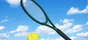 乾貞治装備(テニスラケット)の評価と使い道