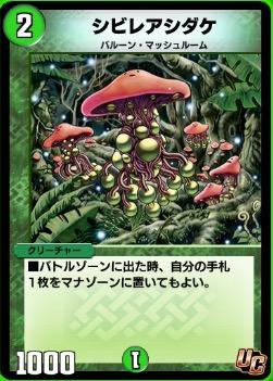 シビレアシダケカード画像