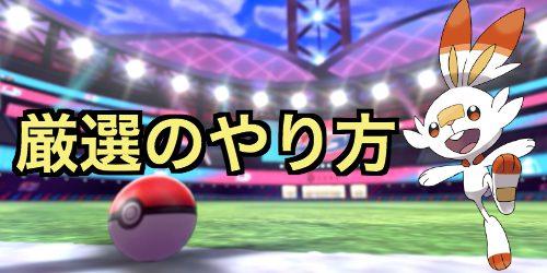 盾 売り場 剣 ポケモン ボール