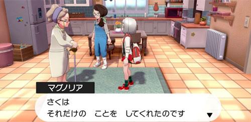 【ポケモンソードシールド】マスターボールの入手場所について/ポケモン剣盾