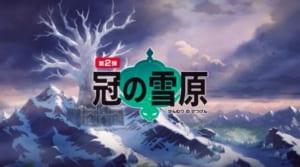 ポケモン剣盾_冠の雪原_概要07