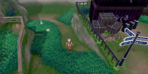 【ポケモン剣盾】スパイクタウンはずれのマップ攻略と入手アイテム