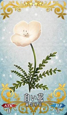 FGO_白い花_イメージ
