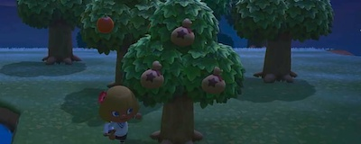 木 あつ なる 森 かね 上限 お の