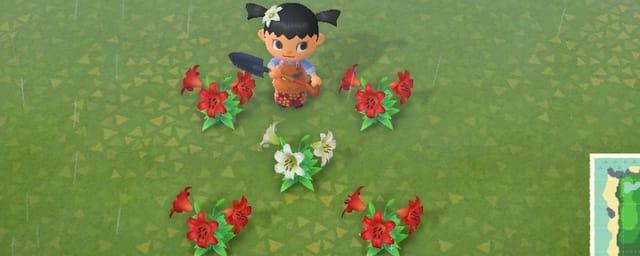 花 交配 どうぶつ の 森