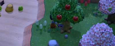 の 森 擬似 タランチュラ どうぶつ