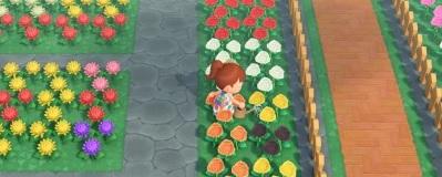 評価 花 あつ森 【あつ森】花の交配表と効率的な植え方【あつまれどうぶつの森】 ゲームエイト