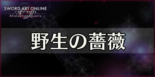 アリリコ_野生の薔薇_banner