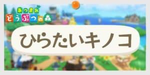 あつ森_ひらたいキノコ_banner