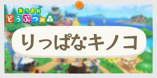 あつ森_りっぱなキノコ_banner