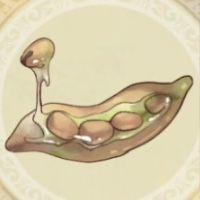 ポルト豆_icon