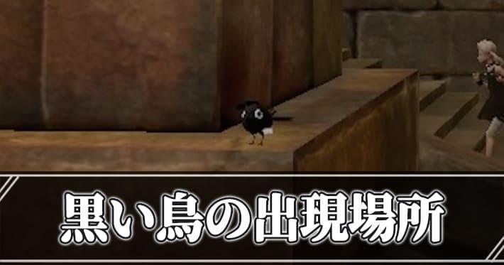 鳥 nier 黒い