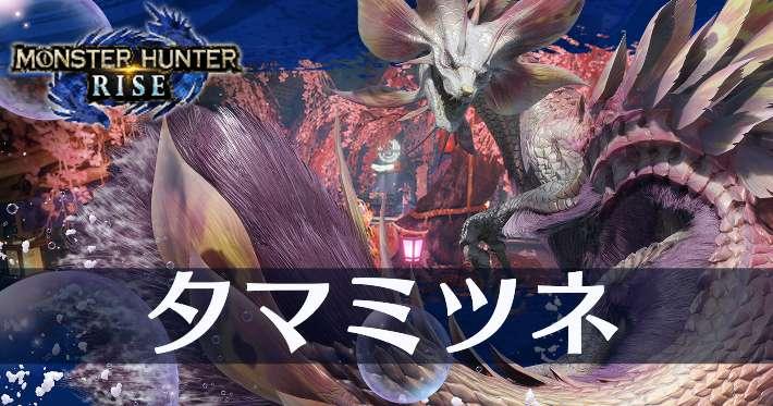 モンハンライズ_タマミツネ_banner