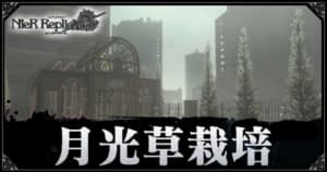 ニーアレプリカントリメイク_月光草栽培_アイキャッチ