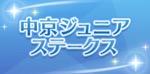 ウマ娘_中京ジュニアステークス