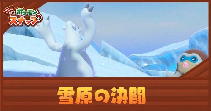 ポケモンスナップ_雪原の決闘